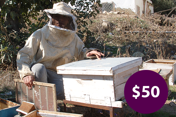 $50: Buy Beehives to Expand a Honey Business